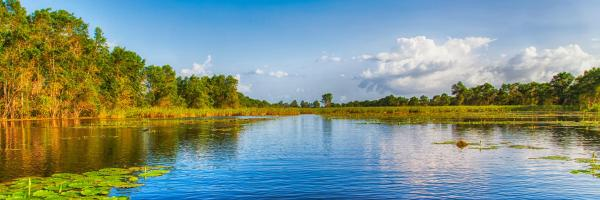 Suriname, Americas & Caribbean