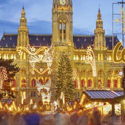 Vienna Christmas Market, Vienna