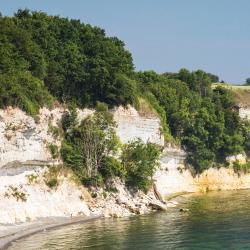 Cliffs of Møn, Borre