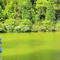 Black Lake Gramado