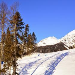 Roza Khutor Ski Resort