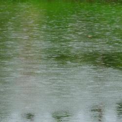 Lago Bentota