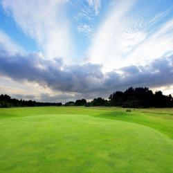 Поле для гольфа Punta Espada