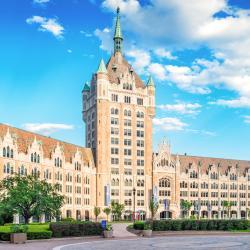 Albany-SUNY Üniversitesi