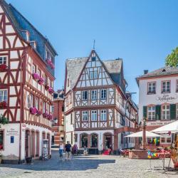 Garden Kirschgarten / Old Town Mainz