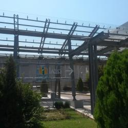 Больница IASO