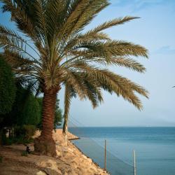 Al Khobar Corniche