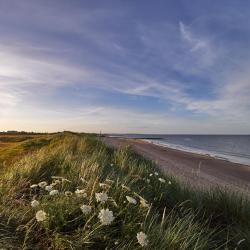 Rosslare Strand, Rosslare