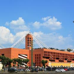 Luigi Ferraris Stadium