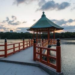 Taman Ohori