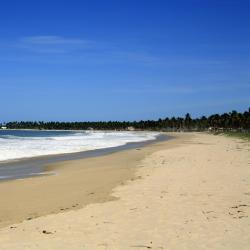 Maracaipe's Beach