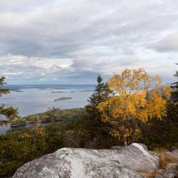 Park Narodowy Koli, Kolinkylä