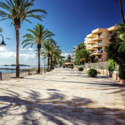 Playa Figueretas
