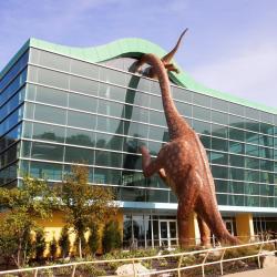 Детский музей Индианаполиса
