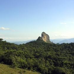 Horto Florestal Park
