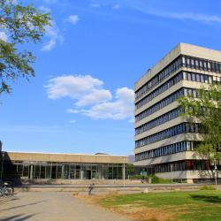Universiti Regensburg
