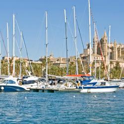 Palma Port