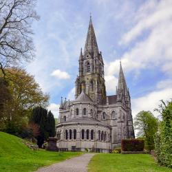 Catedral de St. Finbarr