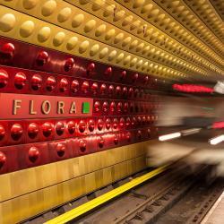 Stanica metra Flora