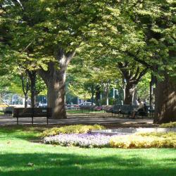 Parco di Odori