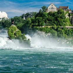 Wodospad Rheinfall, Dachsen