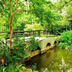 Taipeis botaniske have
