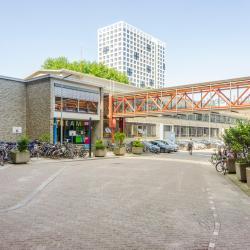 Delfto technologijos universitetas