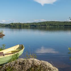 Central Finland 15 svečių namų