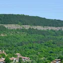 Province de Veliko Tarnovo