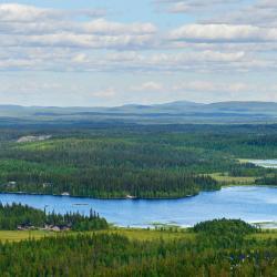 Oulu tartomány