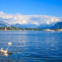 Lake Lucerne 30 hotels with a jacuzzi