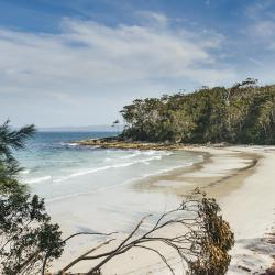 Jervis Bay 3 campgrounds