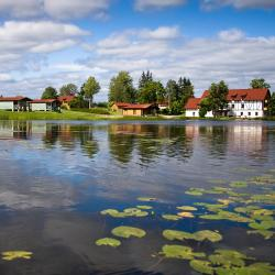 Saldus Municipality 7 hotel murah