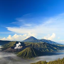 East Java 39 albergs