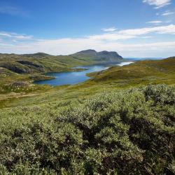 Telemark megye
