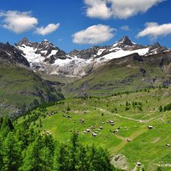 Swiss Alps 4563 self catering properties