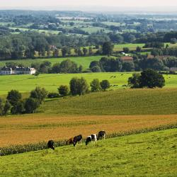 Limburg 8 càmpings