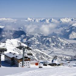 Avusturya Alpleri