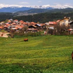Rhodope Mountains 193 apartamentai