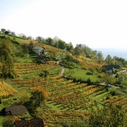 Dolenjska (Bassa Carniola)