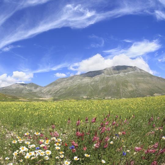 Escursioni nel Parco del Monte Cucco