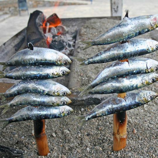 Gegrillte Sardinen in La Carihuela