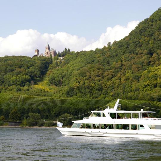 Weintour entlang des Rheins
