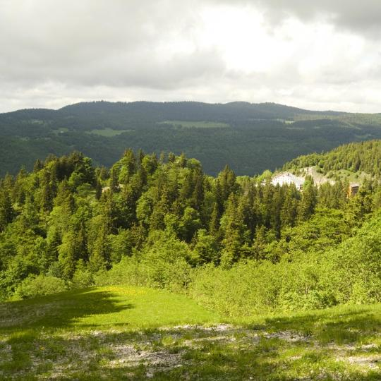 Natuurreservaat Haute Chaîne du Jura