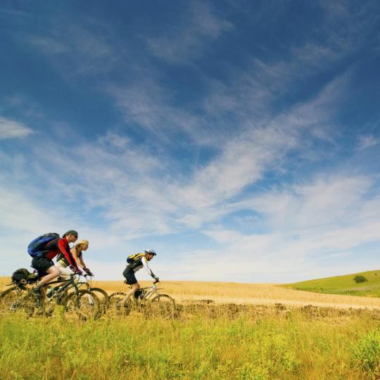 1 000 km de pistes cyclables en Vendée