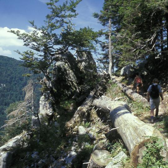 Wanderweg Route des Crêtes