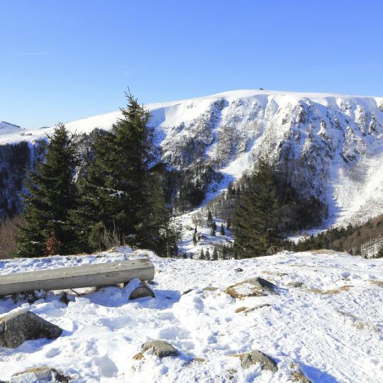 Лыжные поездки в регионе