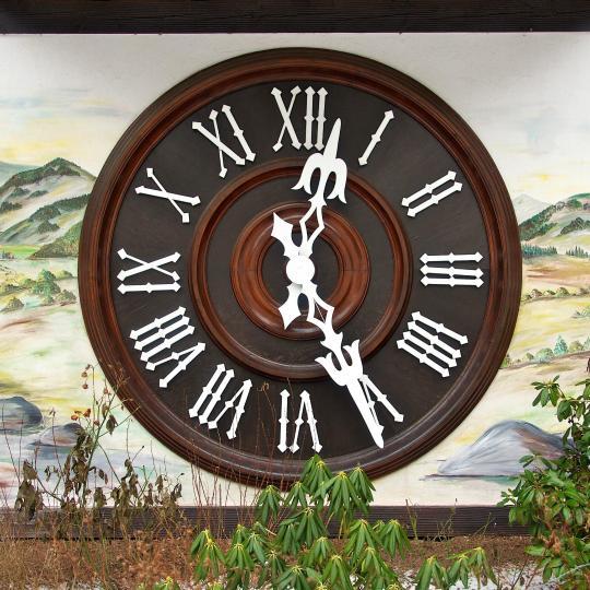 Schönach e l'orologio a cucù più grande del mondo