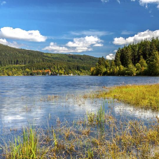 Foresta Nera meridionale: laghi, sorgenti termali naturali e orologi a cucù