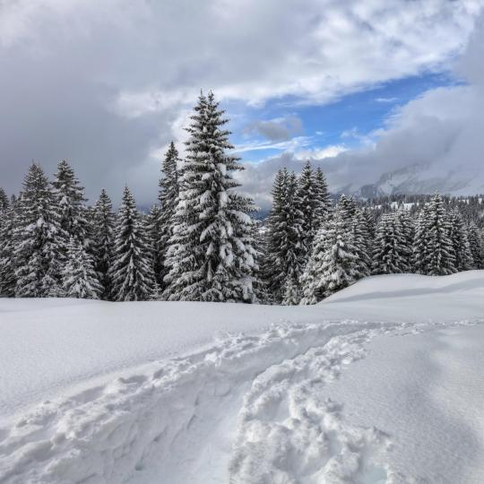 Snowshoeing in the Dolomite Mountains